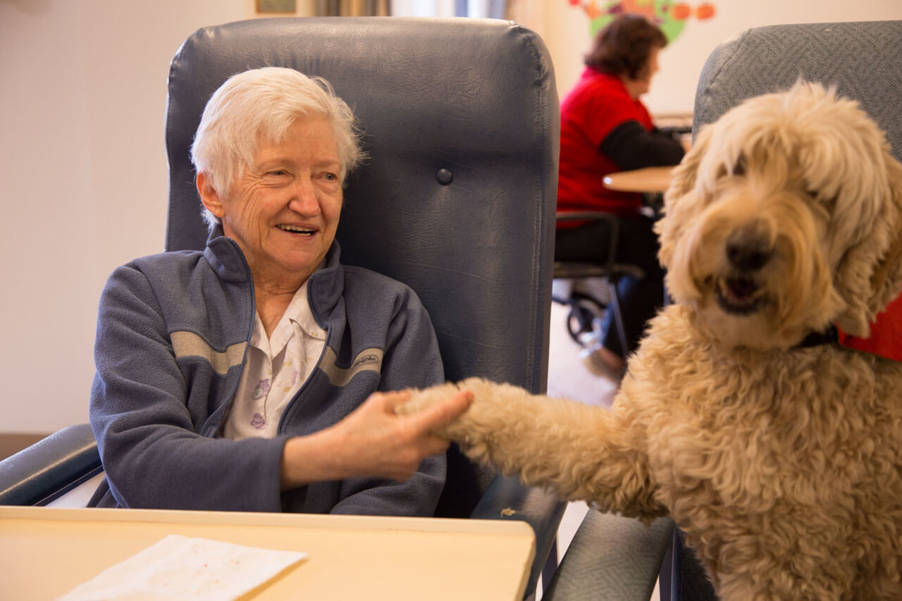 We All Love Our Furry Friends, But Do Nursing Homes Allow Pets?